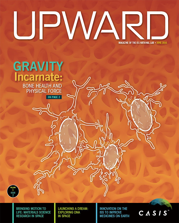 upward volume 1 issue 2 cover