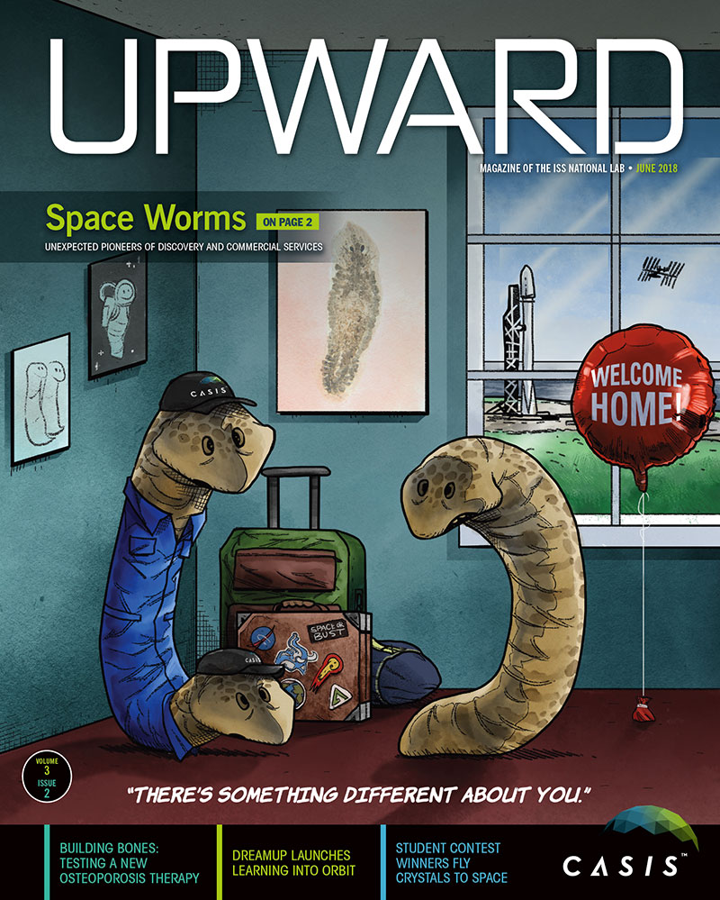upward 3 2 magazine cover