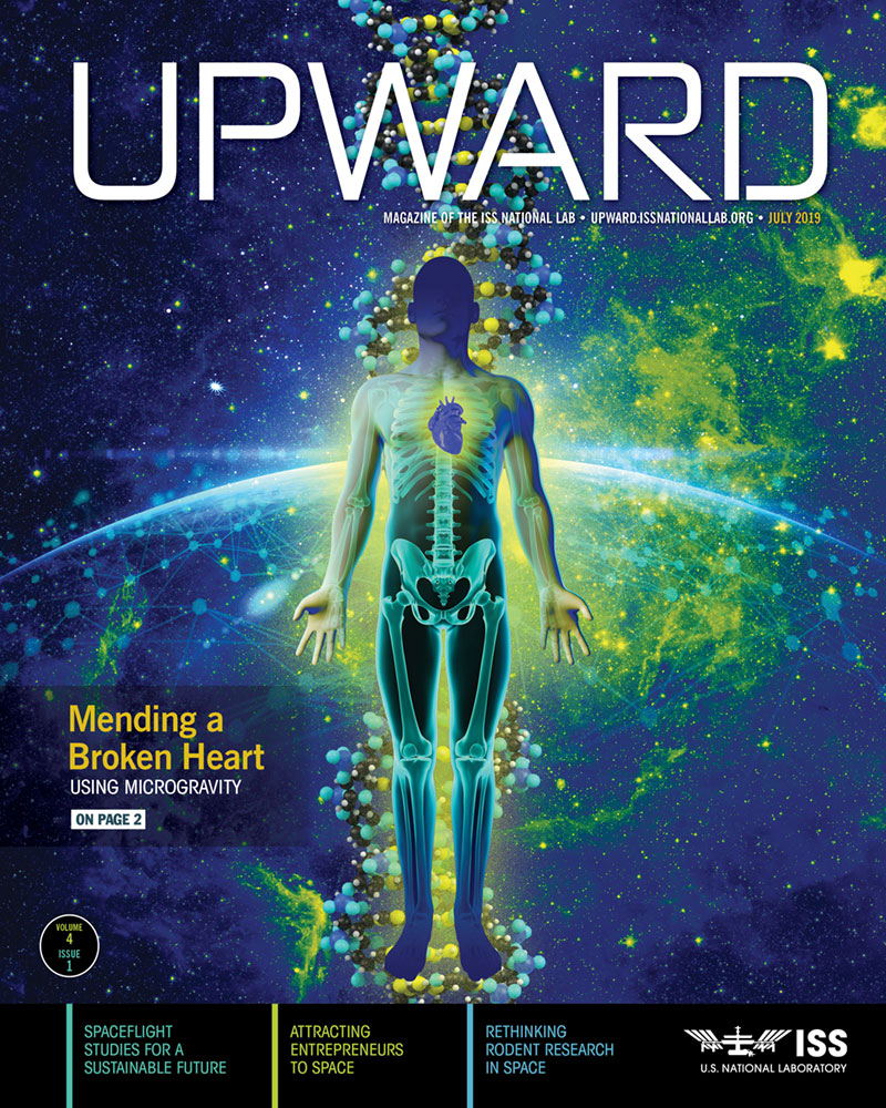 upward4 cover